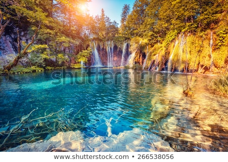 Nature scene with waterfall and river Stock photo © bluering