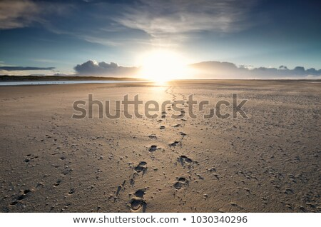 Spiritual Journey Stock photo © Lightsource