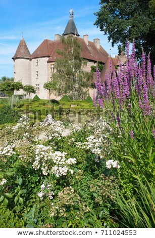 castle of beauvoir france stock photo © is2