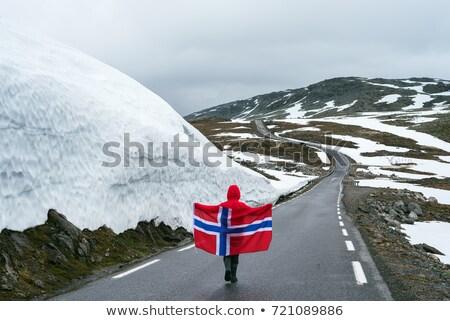 Dziewczyna norweski banderą górskich drogowego Norwegia Zdjęcia stock © Kotenko