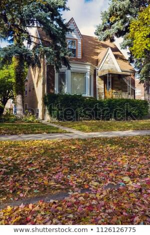 Tipik Chicago ev sonbahar manzara Illinois Stok fotoğraf © benkrut