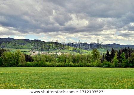 spring landscape with mountains in cloudy weather stock photo © kotenko