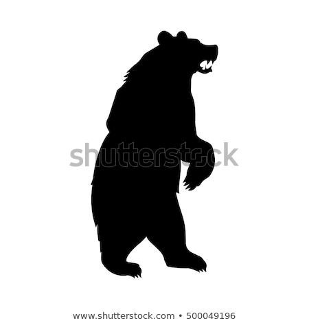 Cartoon Angry Alaska Stock photo © cthoman