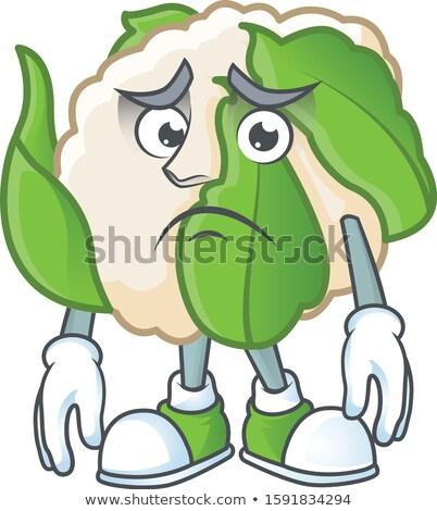 Ijedt rajz karfiol illusztráció darab néz Stock fotó © cthoman