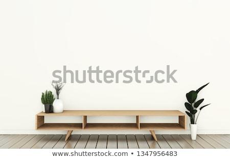 Lege tv kabinet witte Open binnenkant Stockfoto © magraphics