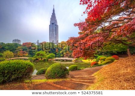 Parque estanque Tokio Japón jardín naturaleza Foto stock © daboost