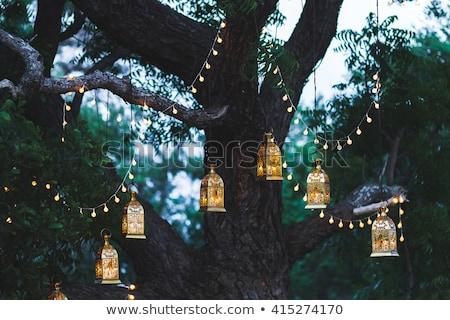 Notte cerimonia di nozze decorazioni arch lampade foresta Foto d'archivio © galitskaya