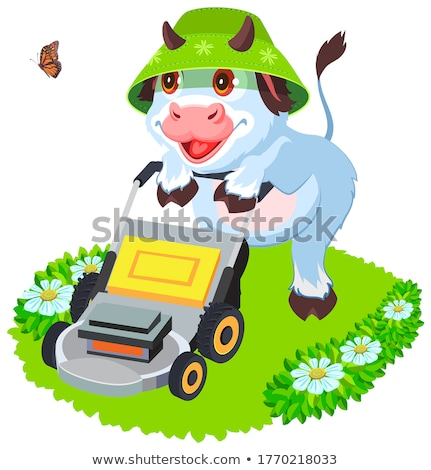Cow bull mowing grass lawn. Funny animal symbol 2021 Stock photo © orensila