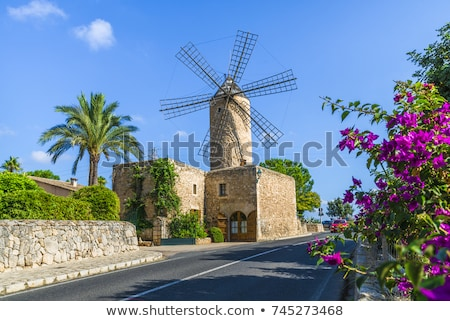 Branco moinho de vento mallorca árvore edifício palma Foto stock © lunamarina