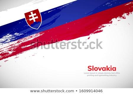 grunge flag slovakia stock photo © hypnocreative