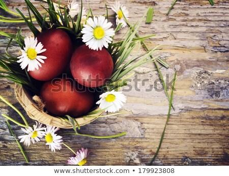 Piros húsvéti tojás fű fészek zöld szín Stock fotó © elly_l