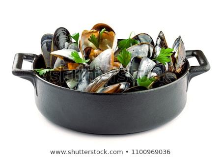 isolated mussel Stock photo © M-studio