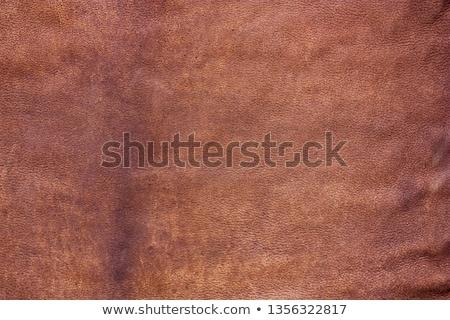 Brown chamois texture Stock photo © homydesign