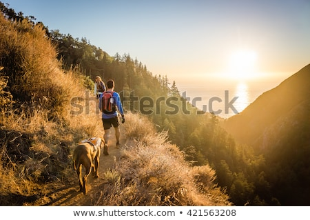 Stockfoto: Wandelen · hond · man · natuur · groot