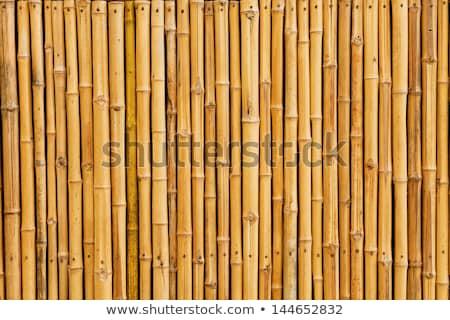 старые бамбук дизайна природы фон обои Сток-фото © H2O