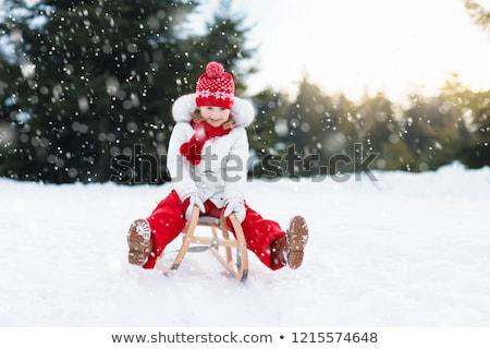 Ragazza slitta felice neve inverno divertente Foto d'archivio © mady70