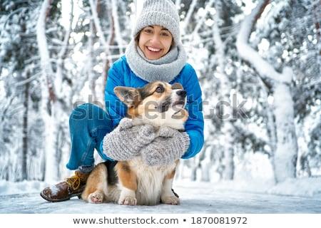 mulher · caminhada · cachorro · bonitinho · bigle - foto stock © dotshock