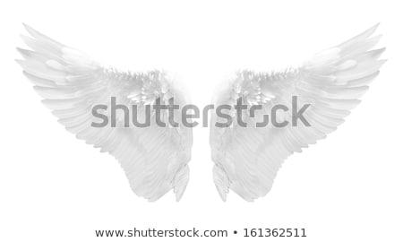 anjo · silhueta · solitário · longo · asas · em · pé - foto stock © jarin13