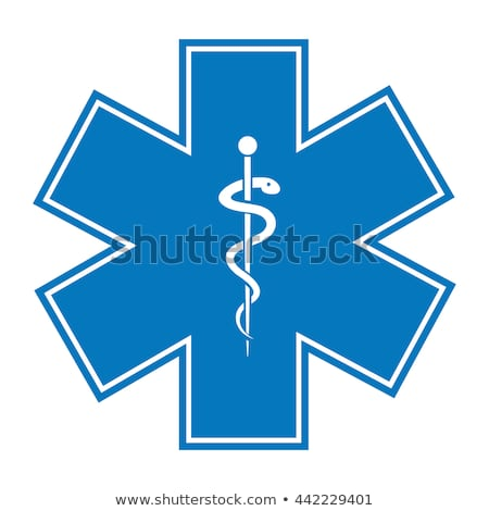 Ambulance Blauw vector icon knop internet Stockfoto © rizwanali3d