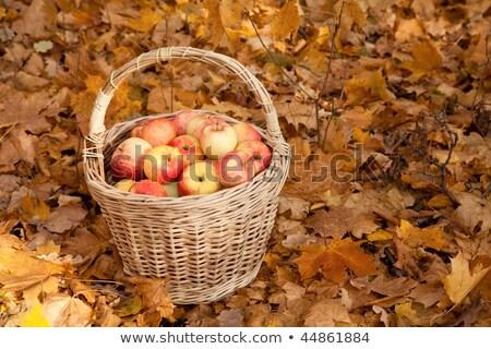 Корзина из осенних листьев