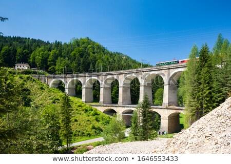 Viaduct in Austria Stock photo © tepic