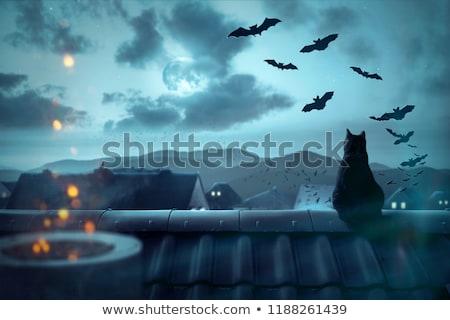 halloween cat on roof stock photo © adrenalina