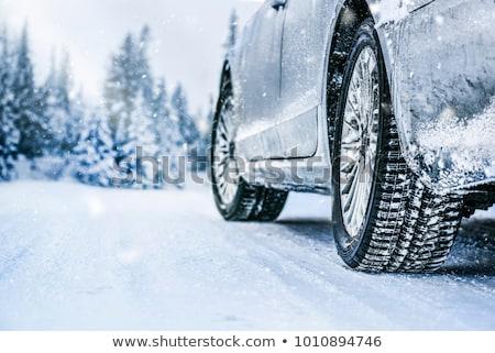 Sneeuw banden winter illustratie teken vogel Stockfoto © adrenalina