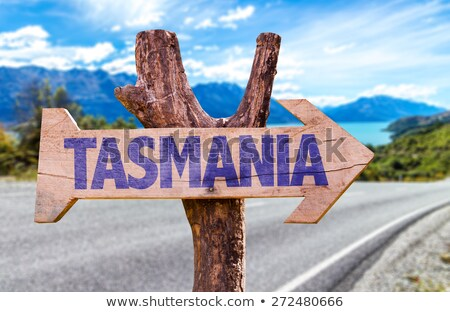 Road and mountains in the Tasmanian countryside Stock photo © artistrobd