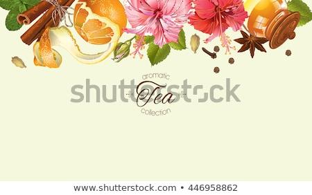 Ebegümeci turuncu baharatlar vanilya karanfil beyaz Stok fotoğraf © Digifoodstock