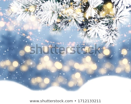 Frozen snow pattern close-up, winter holidays background, Stock photo © artfotodima
