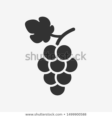 Green grapevine leaves in vineyard Stock photo © stevanovicigor
