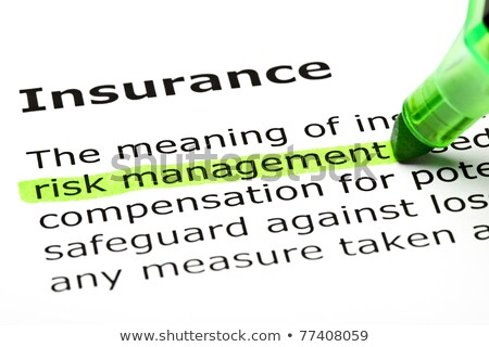 'Risk management' highlighted, under 'Insurance' stock photo © ivelin