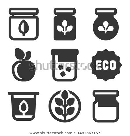 Organiczny owoców warzyw ochrona zestaw Zdjęcia stock © robuart
