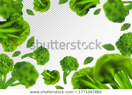 Taze brokoli ikon gerçekçi örnek vektör Stok fotoğraf © MarySan
