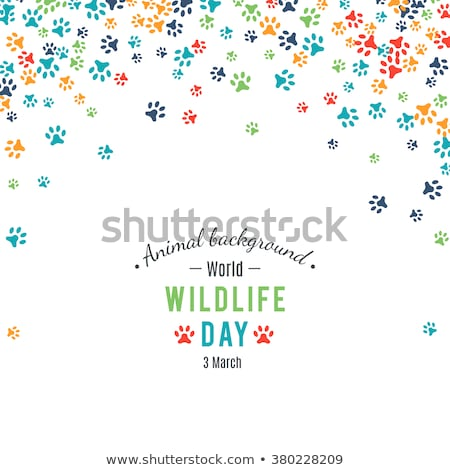 wild life animal mix Stock photo © bluering