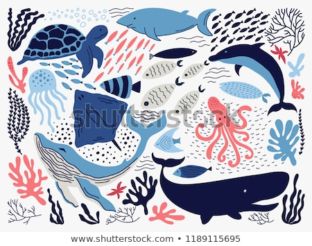 Stock photo: Sea animals