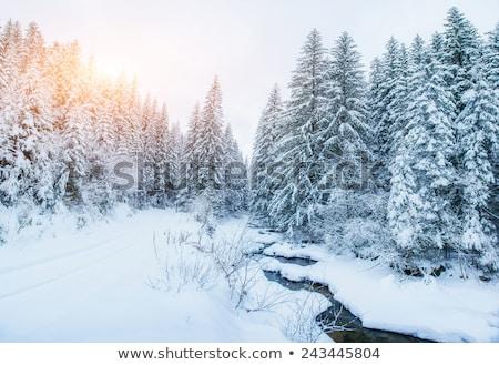 Dağ dere dağlar su dere Stok fotoğraf © lovleah