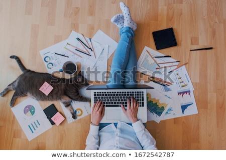 Online assistent werken kantoor illustratie glimlachend Stockfoto © jossdiim