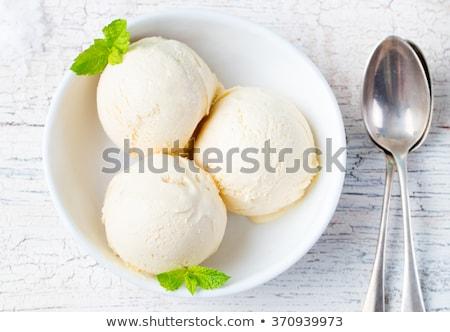 Vanília fagylalt menta tál organikus termék Stock fotó © joannawnuk