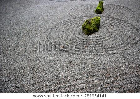 Zen garden with grey stones and green leaves  Stock photo © dashapetrenko