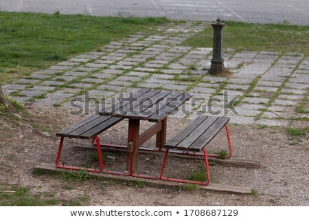 Vacant rustic bench and table in a deserted park Stock photo © Giulio_Fornasar