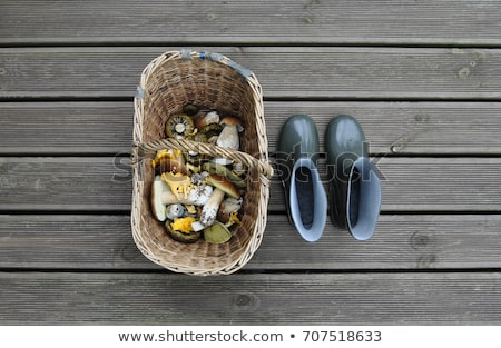 basket of mushrooms and feet in gumboots in forest Stock photo © dolgachov