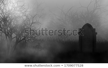 Old graveyard with spooky old dead trees Stock photo © rcarner
