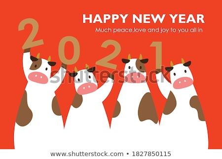 év · 2011 · boldog · új · évet · boldog · hó · háttér - stock fotó © pathakdesigner