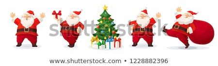 Pine tak geschenk zakken geïsoleerd witte Stockfoto © Raduntsev