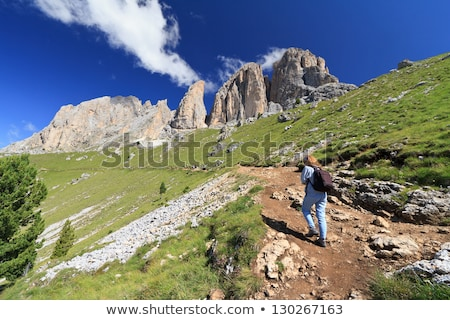 testtartás · magas · tehenek · fa · fű · hegy - stock fotó © antonio-s