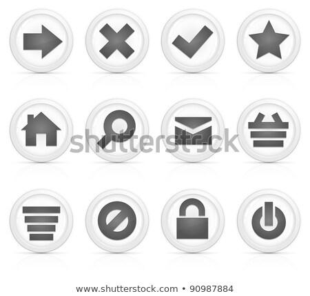 Lock on, icon grey glass, isolated on white background. Stock photo © zeffss