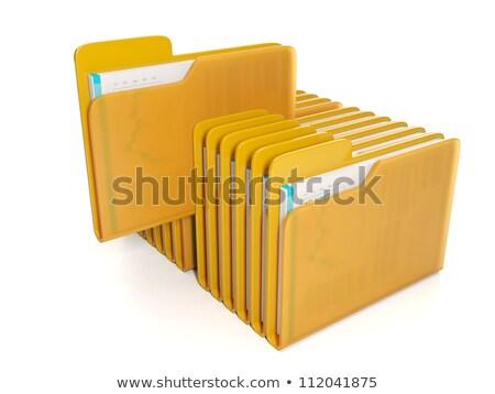 3d illustration: Business idea. The group folders with documents Stock photo © kolobsek