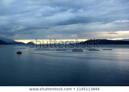 水生の · ファーム · 湖 · 日照 · 水 · 魚 - ストックフォト © lunamarina