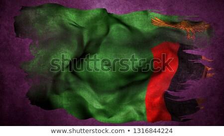 futball · zászló · Zambia · izolált · fehér · sport - stock fotó © mikhailmishchenko